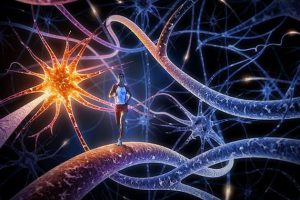 Corriendo entre Neuronas